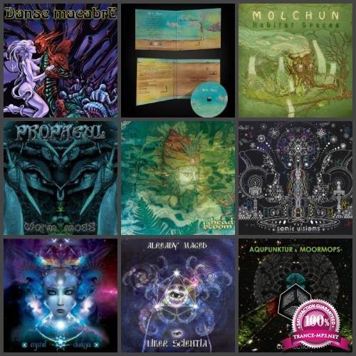 Label - Sonic Chakras Records [2010-2018] (2019) FLAC