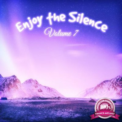 Enjoy the Silence, Vol. 7 (2019)