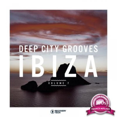 Deep City Grooves Ibiza Vol 7 (2019)
