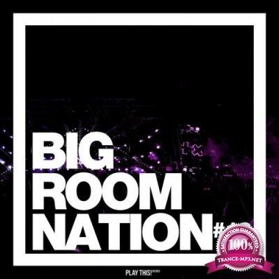 Big Room Nation, Vol. 13  (2019)