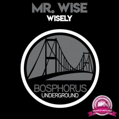 Mr. Wise - Wisely (2019)