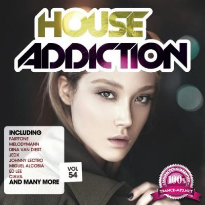 House Addiction, Vol. 54 (2019)