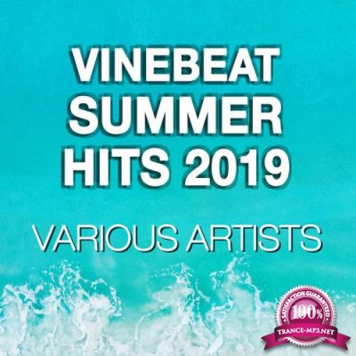 VineBeat Summer Hits 2019 (2019)