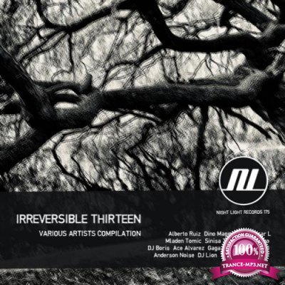 Irreversible Thirteen (2019)