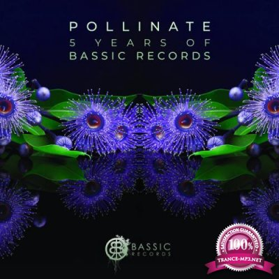 Pollinate (5 Years of Bassic Records) (2019)