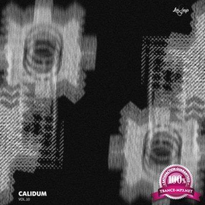 Calidum Vol 10 (2019)