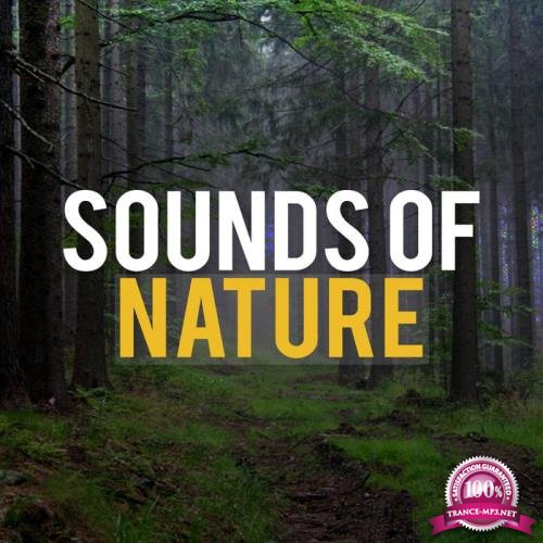 Sounds Of Nature - Sounds Of Nature (2020)