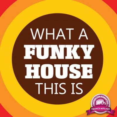 DJ Luciano - What A Funky House This is (2020)