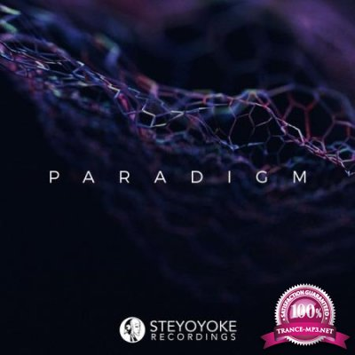 Steyoyoke Paradigm, Vol. 06 (2020)