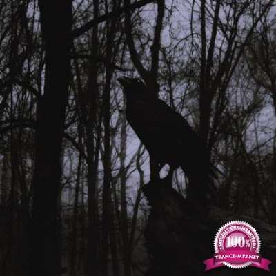 Black Raven 04 (2020)