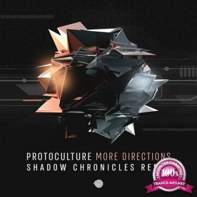 Protoculture - More Directions (Shadow Chronicles Remix) (Single) (2020)