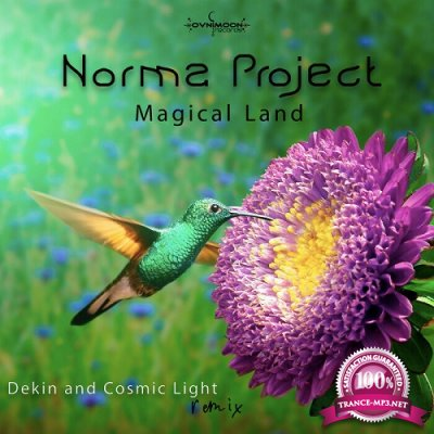Norma Project - Magical Land (Single) (2020)