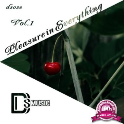 Pleasure In Everything Vol 1 (2020)