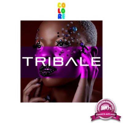 Colore - T R I B A L E (2020)