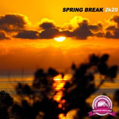 Spring Break 2K20 (2020)