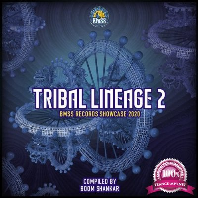 VA - Tribal Lineage 2 (Compiled by Boom Shankar) (2020)