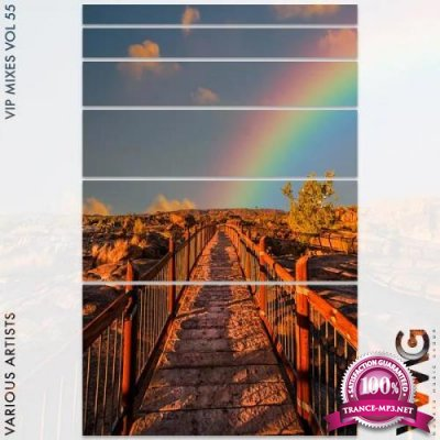 VIP Mixes, Vol. 55  (2020)