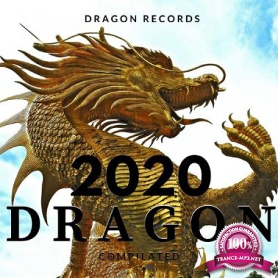 2020 Dragon Compilated (2020)