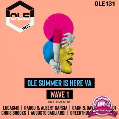 Ole Summer Is Here VA Wave 1 (2020)
