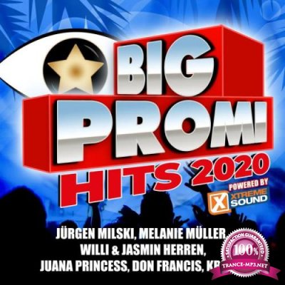 Big Promi Hits 2020 (Powered by Xtreme Sound) (2020)