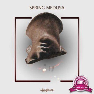 Spring Medusa, Vol. 8 (2020)
