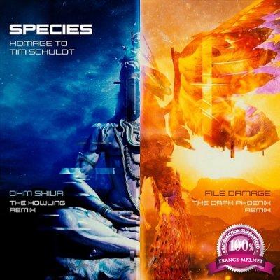 Tim Schuldt - Homage to Tim Schuldt EP (2021)
