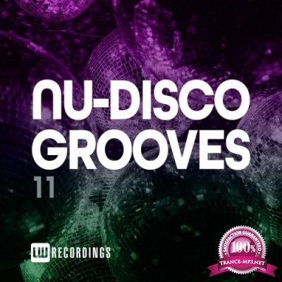Nu-Disco Grooves Vol 11 (2021)