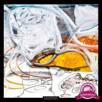 Magnified as Giants - Apollon Records Prog (2021)