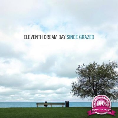 Eleventh Dream Day - Since Grazed (2021)