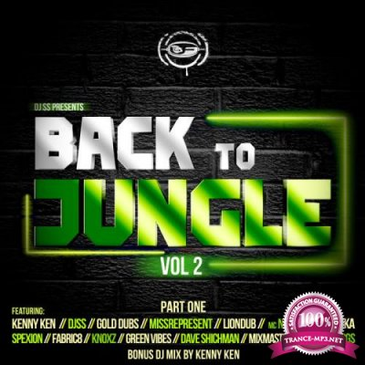 DJ Ss Presents Back To Jungle Vol 2 (Part 1) (2021)