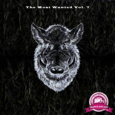 The Most Wanted Vol. 7 (2021)