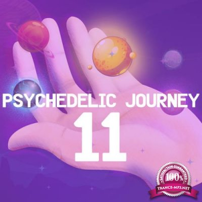Psychedelic Journey 11 (2021)